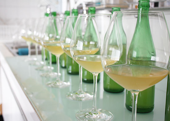 Azienda_bottiglie_campioni